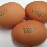 Thermal Inkjet Systems - Egg Printing